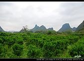桂林印象劉三姐之旅:DSC_3835.jpg