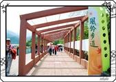 2008 綠色博覽會:DSC_4047.jpg