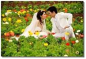 花海裏的新娘:DSC_3089.jpg