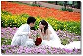 花海裏的新娘:DSC_3097.jpg
