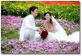 花海裏的新娘:DSC_3100.jpg