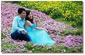 花海裏的新娘:DSC_3106.jpg