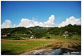 苗栗向天湖 & 鯉魚潭水庫:03.jpg