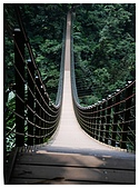 南投梯子吊橋:06.jpg