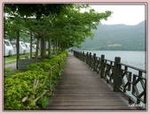 花蓮鯉魚潭:18.jpg