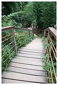 南投梯子吊橋:DSC_0007.jpg