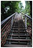南投梯子吊橋:DSC_0008.jpg