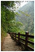 南投梯子吊橋:DSC_0014.jpg