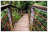 南投梯子吊橋:DSC_0018.jpg