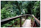 南投梯子吊橋:DSC_0019.jpg