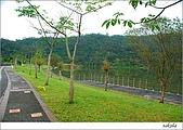 梅花 & 梅花湖:DSC_2465.jpg