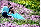 花海裏的新娘:DSC_3109.jpg
