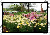 2008 綠色博覽會:DSC_3958.jpg