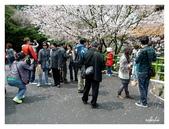 吉野櫻花季:T 122.jpg
