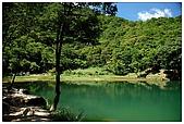 新山夢湖:DSC_9606.jpg