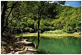 新山夢湖:DSC_9617.jpg