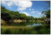 新山夢湖:DSC_9630.jpg