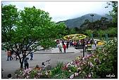 2009陽明山花季:DSC_3137.jpg