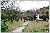 2009陽明山花季:DSC_3146.jpg
