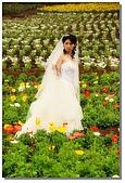 花海裏的新娘:DSC_3081.jpg