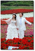 花海裏的新娘:DSC_3096.jpg