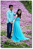 花海裏的新娘:DSC_3104.jpg