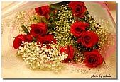 櫻子留言板:玫瑰留言板