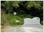 2014 油桐花:林口森林步道登山口