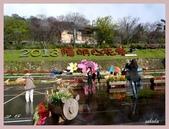 2013陽明山花季:P1050211.jpg