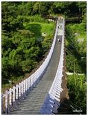 白石湖步道那些花果:_1090588.jpg