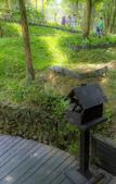 新社(生態溪、薰衣草花園):_DSC6077.jpg