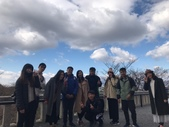 20190323~29大阪京都腳痛之旅:2019324_190330_0004_0.jpg