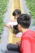 102鄉居生活:二崙採草莓 (6).JPG