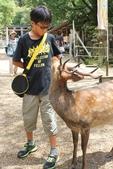 2014京阪神:奈良春日大社.JPG