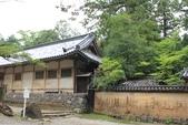 2014京阪神:2014奈良 (14).JPG