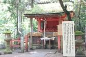 2014京阪神:2014奈良 (18).JPG