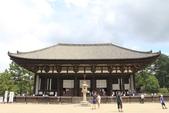2014京阪神:2014奈良 (28).JPG