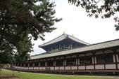 2014京阪神:奈良東大寺.JPG