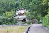 2014京阪神:嵐山 (19).JPG