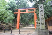 2014京阪神:2014奈良 (12).JPG