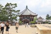 2014京阪神:2014奈良 (27).JPG