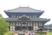 2014京阪神:2014奈良 (8).JPG