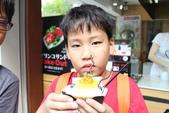 2014京阪神:嵐山的美味點心.JPG