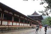 2014京阪神:2014奈良 (11).JPG