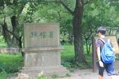2015上海南京杭州:南京梅花山孫權墓.JPG