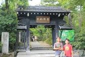 2014京阪神:嵐山 (17).JPG