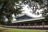 2014京阪神:2014奈良 (10).JPG