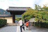 2014京阪神:嵐山 (5).JPG