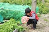 102鄉居生活:2013寒假 (1).JPG