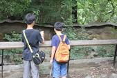 2014京阪神:2天王寺動物園 (3).JPG